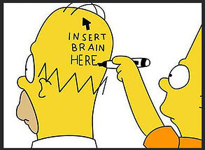 Insert brain here!